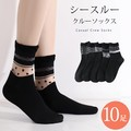 Ladies Crew Socks Crew Socks Socks Sheer Black