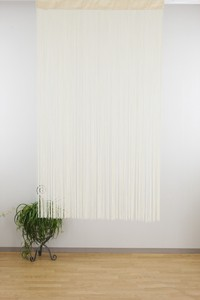 soft Polyester Clean Ring Curtain