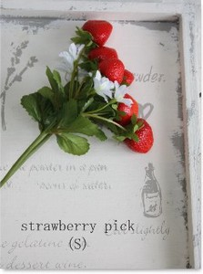 Strawberry Pick