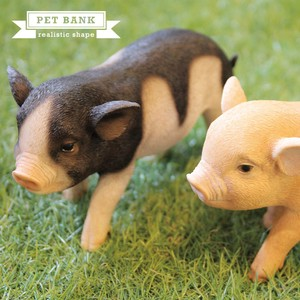 Popular Real Animal Piggy Bank Pet Bank Animal Interior Real Animals