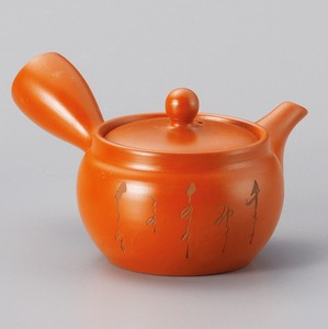 Steaming TOKONAME Ware Thin Font Steaming Japanese Tea Pot