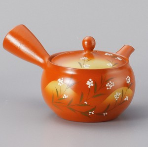 Steaming TOKONAME Ware Japanese Tea Pot