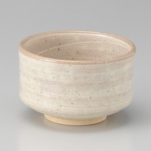 Brush Painting Japanese Rice Bowl