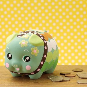 Savings Fun Mint