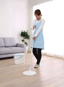 Rotation Mop Type