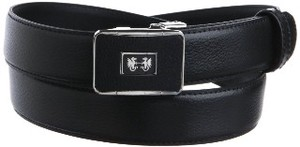 Belt Buckle Belt Business