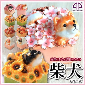Shiba Dog Jewelry Animal Jewelry Box