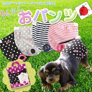 Dog Wear Pants Sanitary Pants Pants