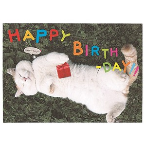 Birthday Cat White Mood Pop Card Gift