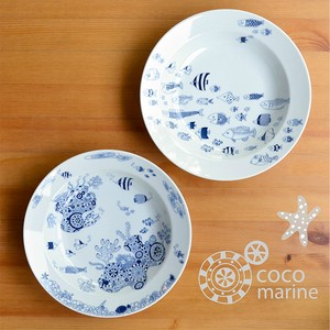 Pasta Plate cocomarine HASAMI Ware Porcelain