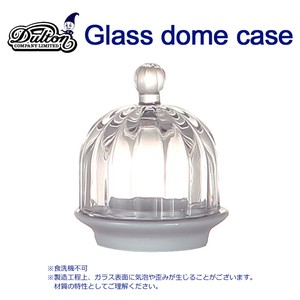 GLASS DOME CASE