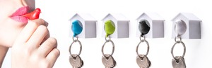 Small Birds Sparrow Key Ring Mini Key Ring Aviary Attached Small Birds