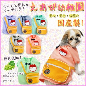 Dog Wear Kindergarten