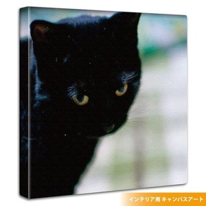 Wall Hanging Product Interior Fabric Panel Cat