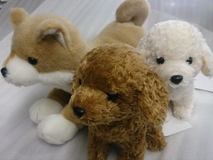 Star Child Toy Poodle Shiba Dog Stand