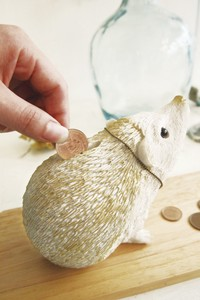 ANIMAL Piggy Bank