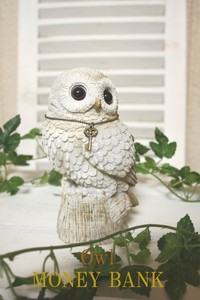 ANIMAL Piggy Bank Owl