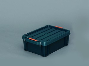 Buckle Container
