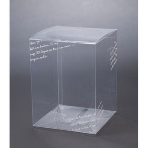 Clear Box Character