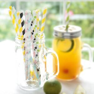 paper straws(ペーパーストロー)24/pack グラス/ジャー/ストロー メイソンジャー