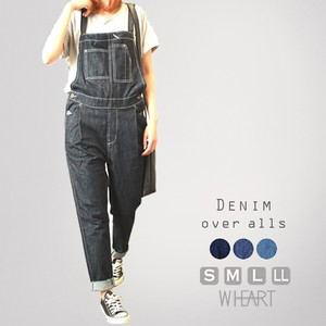All-in-one Denim Overall Overall Prenatal