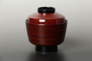 Inside Fountain URUSHI Coating Echizen Lacquerware