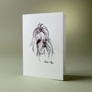 oblation papers&press 活版印刷カード dog cards シーズー