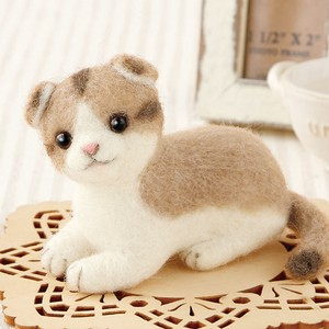 Scottish Fold DIY Kit