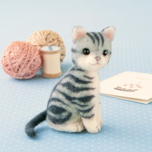 American Shorthair DIY Kit