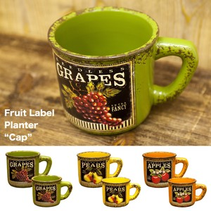 Fruit Label Planter Cup