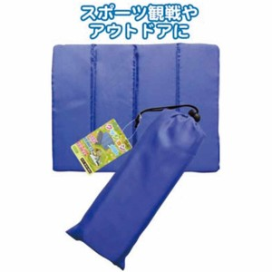 Objects and Ornaments Ornament Outing Cushion Pouch Bag