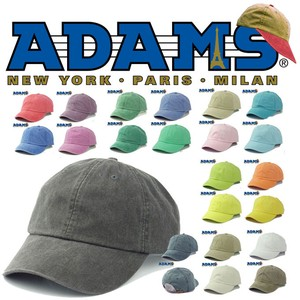 【春夏新作】ADAMS OPTIMUM-SOLID PIGMENT  14575
