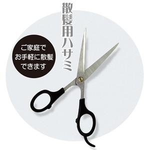 Haircut Scissors