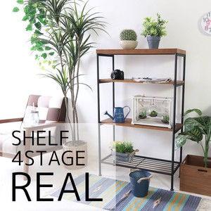 Shelf 4 Steps 2 Colors