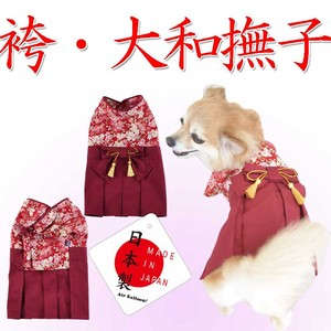 Dog Wear Graduate Nadeshiko