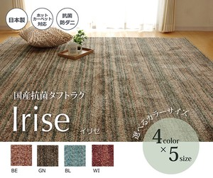Carpet Antibacterial Deodorization Mix Color