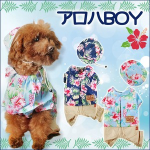Dog Wear Aloha Shirt Connection Hats & Cap Set