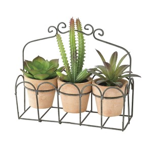 DECOR IMITATION CACTUS 3PCSセットBROWN
