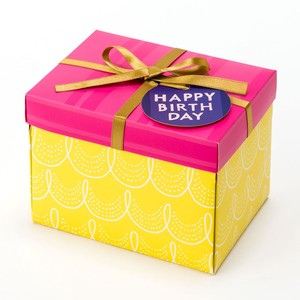 <アルバム>SURPRISE BOX ALBUM SAL-01 YELLOW