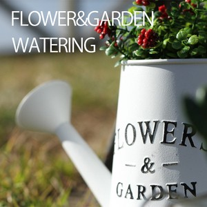 Flower Garden Pot Watering Can 3 Colors