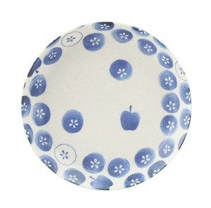 Apple Dish Plate Mino Ware Daily Plates & Utensil Casual Apple