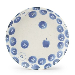 Apple Dish Plate Mino Ware Daily Plates Casual Apple