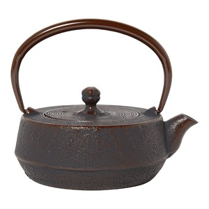 Nambu Tekki Japanese Tea Pot
