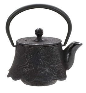 Nambu Tekki Japanese Tea Pot Fuji