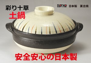 Color Tokusa Earthen Pot / Clay pot