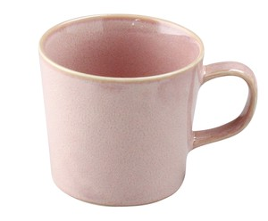 Natural Color Mug Mino Ware Plain Color Plates Coffee