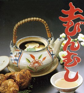 Earthen Teapot Steaming Made in Japan