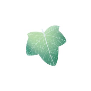 Leaf Memo Pad Green