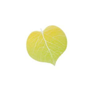 Leaf Memo Pad Yellow