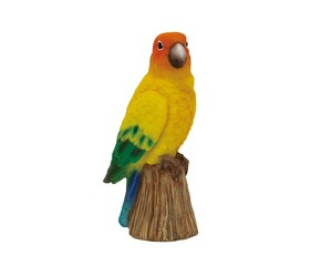 Solid Objects Mexico Parakeet Small Birds Objects